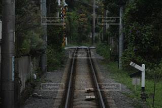 線路の写真・画像素材[1426195]