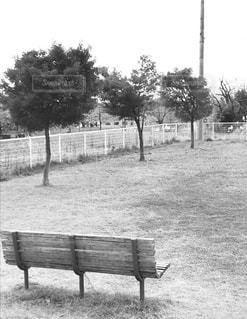 木製のフェンスの上に座っている空の公園のベンチの写真・画像素材[2728650]