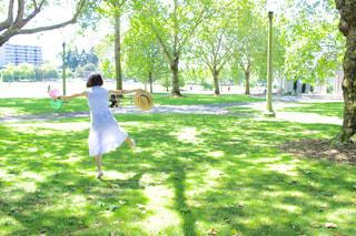 公園の写真・画像素材[356392]