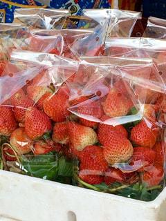 果物 - No.356615