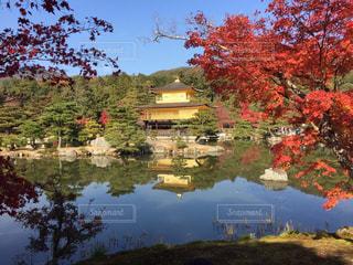 秋の写真・画像素材[428306]