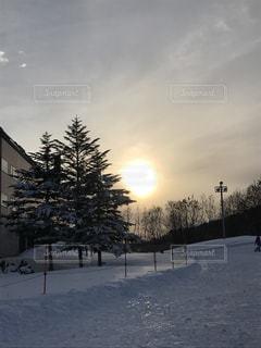冬の写真・画像素材[357207]