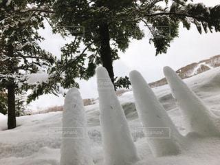 冬の写真・画像素材[383961]