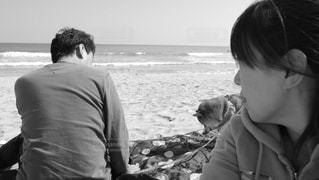 犬の写真・画像素材[389405]