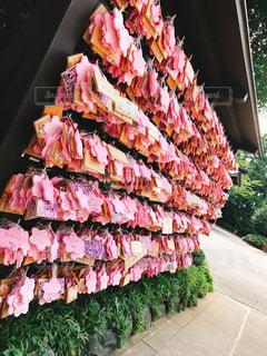ピンクの花の束の写真・画像素材[758297]