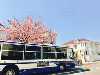 春 - No.410221