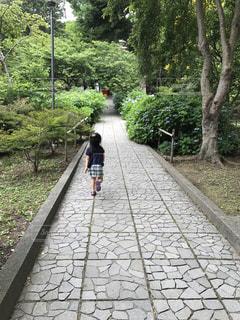 木の隣に歩道を歩いている人の写真・画像素材[844340]