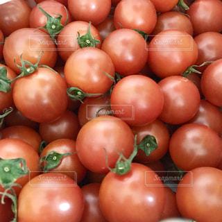 トマトの写真・画像素材[357833]