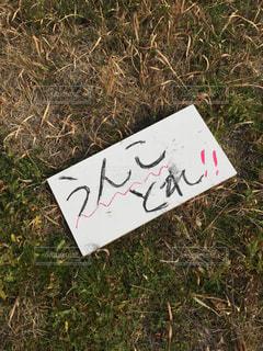 芝生 - No.397368