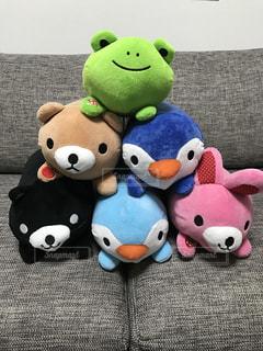 ペンギンの写真・画像素材[359748]