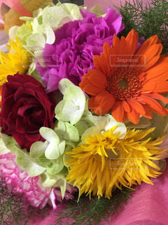 花束の写真・画像素材[359749]