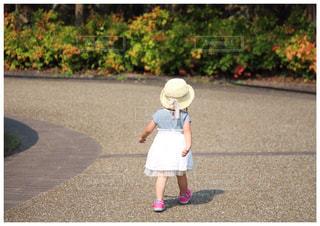 奈良竹取公園の写真・画像素材[360058]