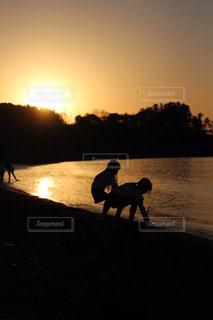 背景に夕日がある浜辺を歩いている犬の写真・画像素材[2136971]