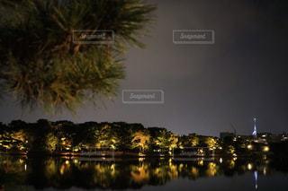 夜景の写真・画像素材[358271]