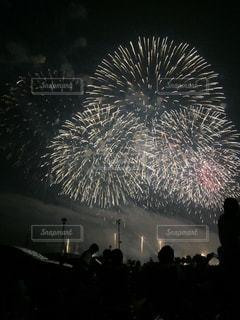 花火の写真・画像素材[376541]