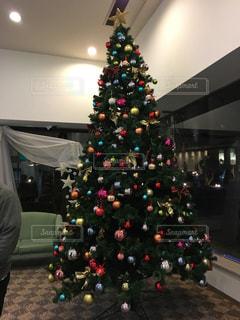 クリスマスツリーの写真・画像素材[376562]