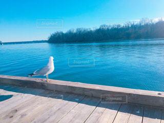 風景の写真・画像素材[372686]