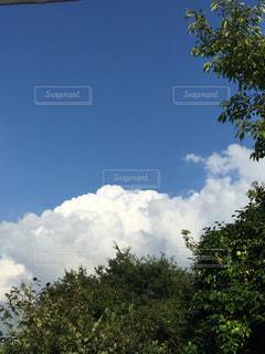 空の写真・画像素材[361464]
