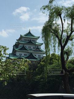 名古屋城の写真・画像素材[1028150]