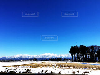 冬の写真・画像素材[363151]