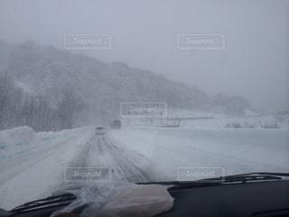 雪の写真・画像素材[359454]