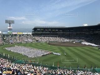 高校野球選手権大会入場行進の写真・画像素材[1514675]