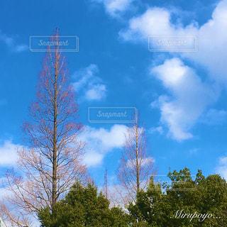空の写真・画像素材[360280]