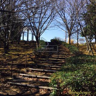 公園 - No.360285