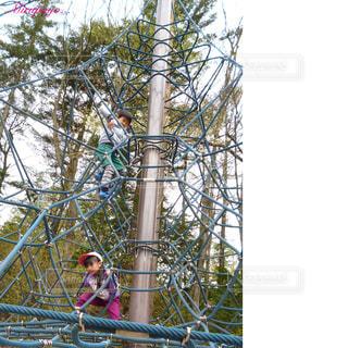 公園の写真・画像素材[361901]