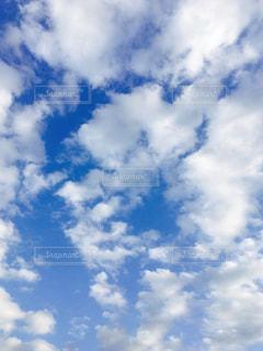 空の写真・画像素材[367504]