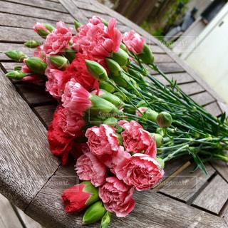 花の写真・画像素材[383755]