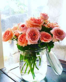 薔薇。の写真・画像素材[764107]