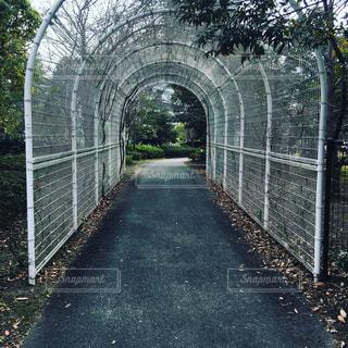 公園の写真・画像素材[363257]