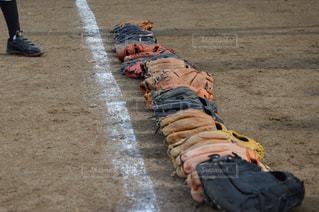 野球チームのグローブたち - No.891907