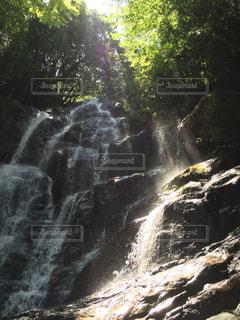自然の写真・画像素材[361811]