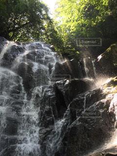 自然の写真・画像素材[361812]