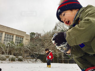 冬の写真・画像素材[361816]