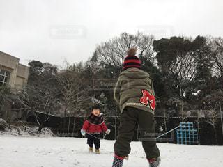 冬の写真・画像素材[361817]