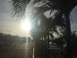 フィリピン 夕焼け ビーチ 美しい 景色の写真・画像素材[374103]
