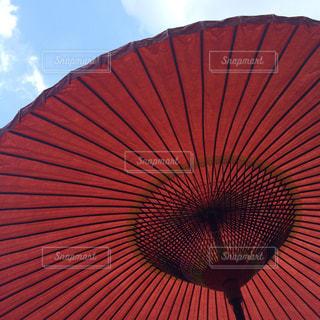 傘の写真・画像素材[487734]