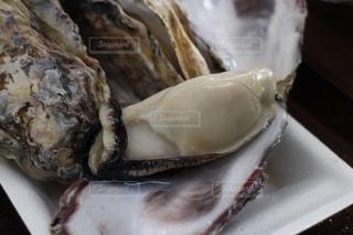 牡蠣のプレートのアップの写真・画像素材[996050]