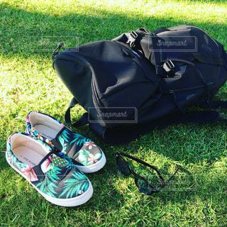 草の上に座って荷物のバッグ カバー フィールドの写真・画像素材[1205758]