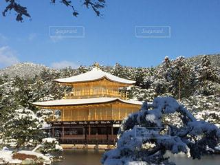 冬の写真・画像素材[363661]