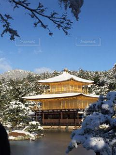 冬の写真・画像素材[363662]