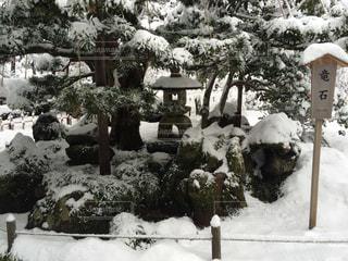 雪の写真・画像素材[365200]