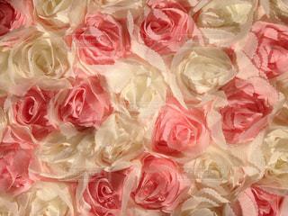 花の写真・画像素材[389954]