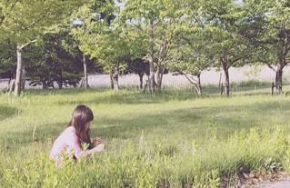 背景の木と緑のフィールドの人の写真・画像素材[1169837]