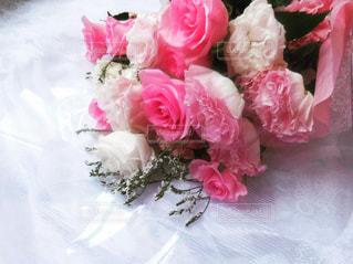 植物にピンクの花の写真・画像素材[1301600]