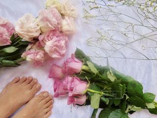近くの花のアップの写真・画像素材[1301616]
