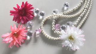 近くの花のアップの写真・画像素材[1672202]